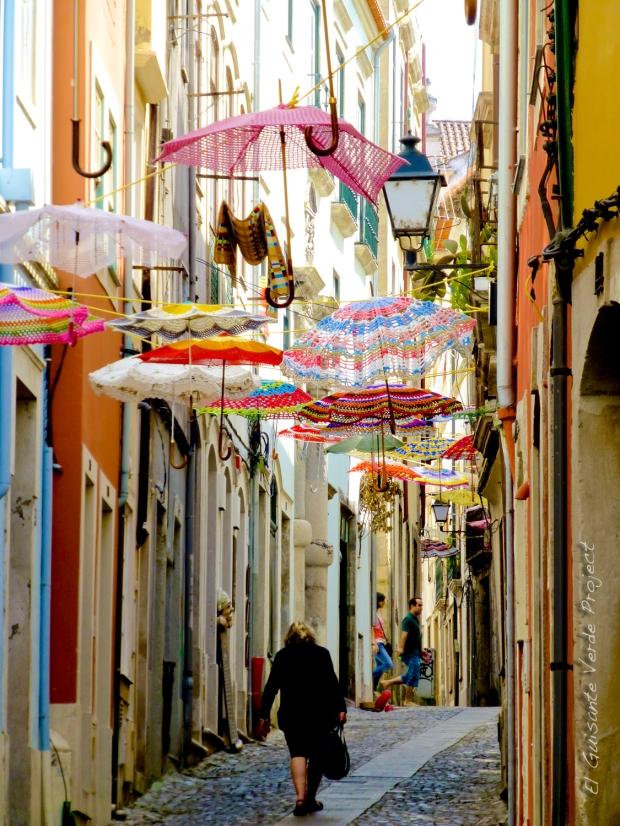 Coimbra_El_Guisante_Verde_Project